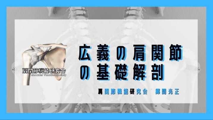 広義の肩関節の基礎解剖