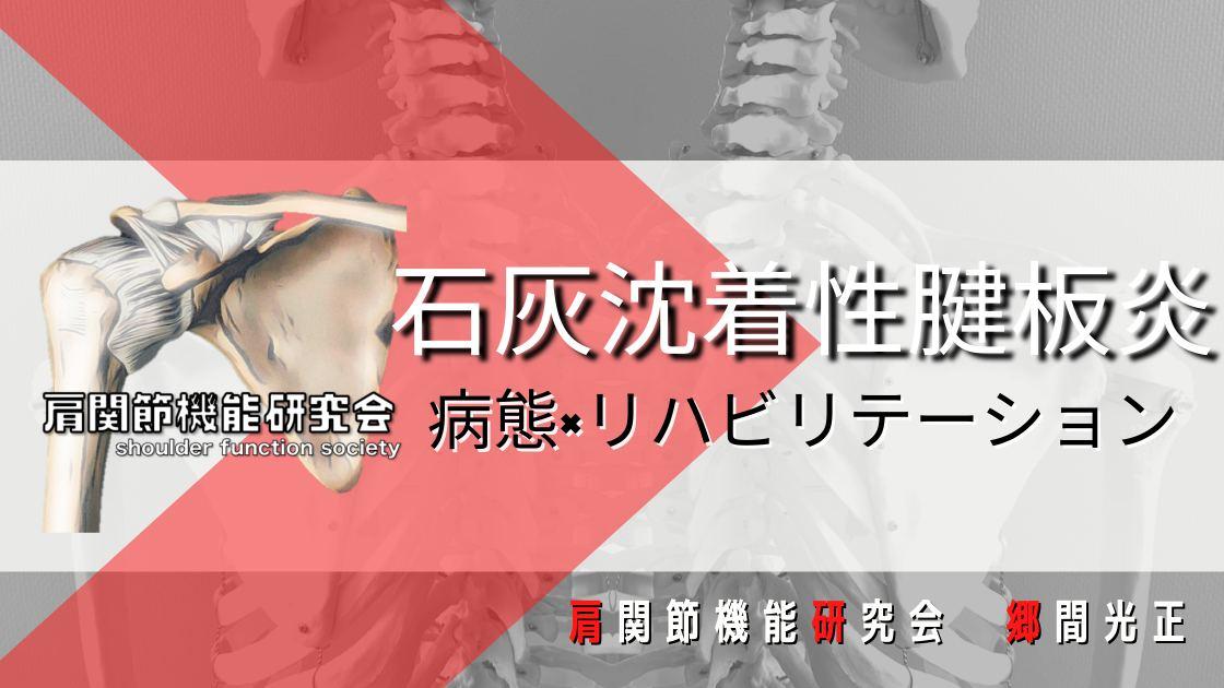 石灰沈着性腱板炎の病態とリハビリテーション