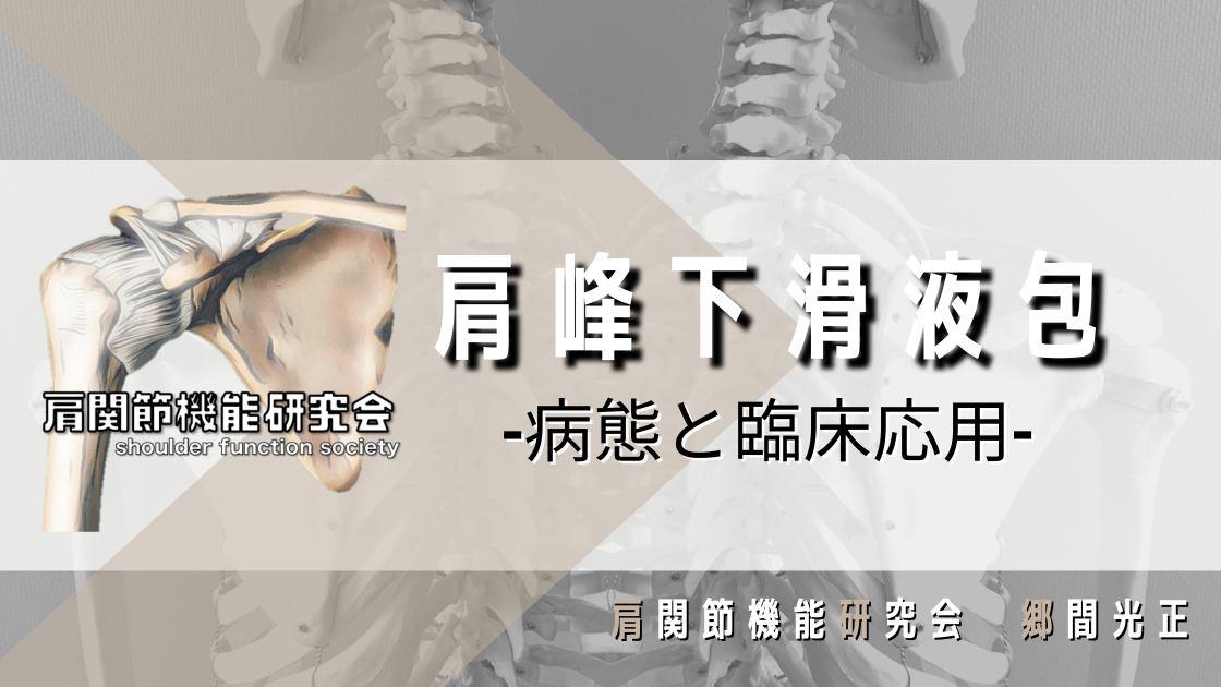 肩峰下滑液包の病態と臨床応用